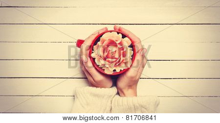 Female Holding Cup With Flower.