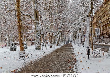 Zagreb Zrinjevac in the snow