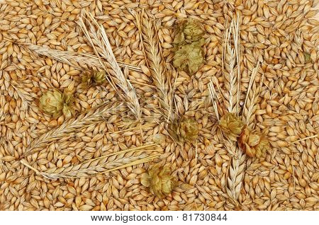 Wheat And Hops
