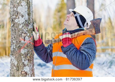 Lumberjack in the forest near tree with an ax