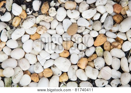 Background Sea Stones