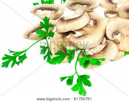 Mushroom Champignon With Green Parsley .isolated