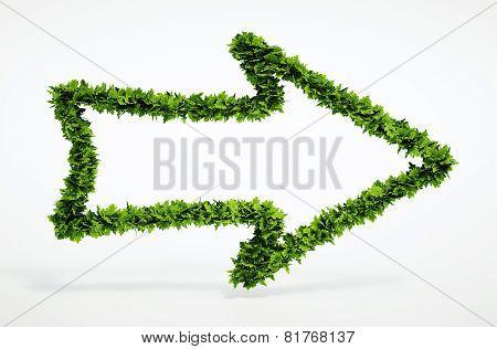 Eco Right Arrow Icon