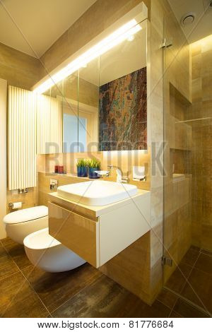 Bathroom With Toilet And Bidet