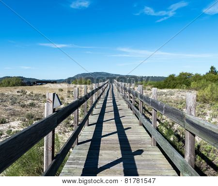 Walking On Wooden Walkway In The Sand Dunes