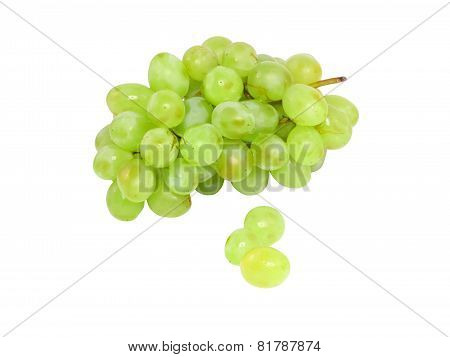 Branch Of Green Grapes . Isolated