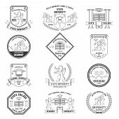 stock photo of graduation hat  - University labels crests sheilds and insignias set with lion griffin and graduation hat education symbols isolated vector illustration - JPG