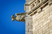 stock photo of gargoyles  - A stone gargoyle on a Welsh church tower on a bright summers day
