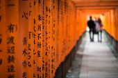 image of inari  - Red Torii of Fushimi Inari Shrine Kyoto Japan - JPG