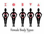 picture of hourglass figure  - silhouettes of various types of female figures - JPG