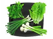 pic of bine  - Vegetable - JPG