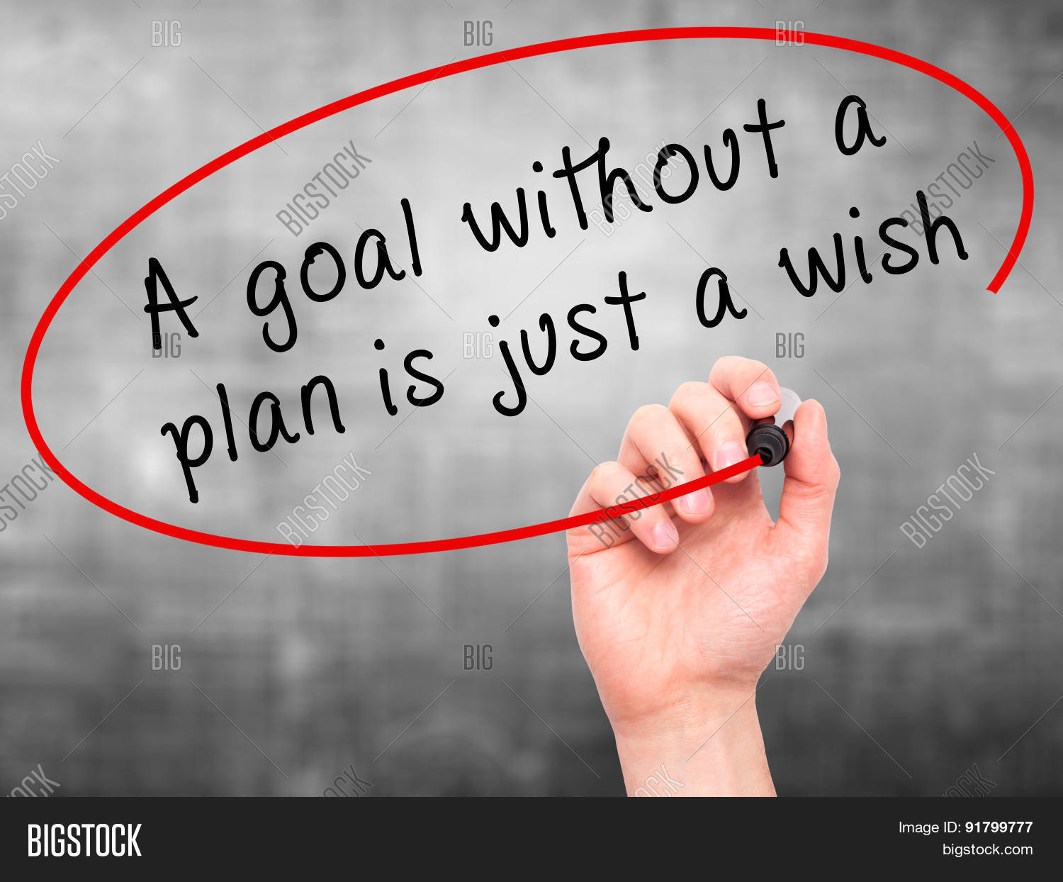a goal without a plan is just a wish essay