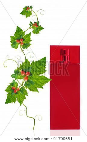 Bottle For Perfumery With Foliage