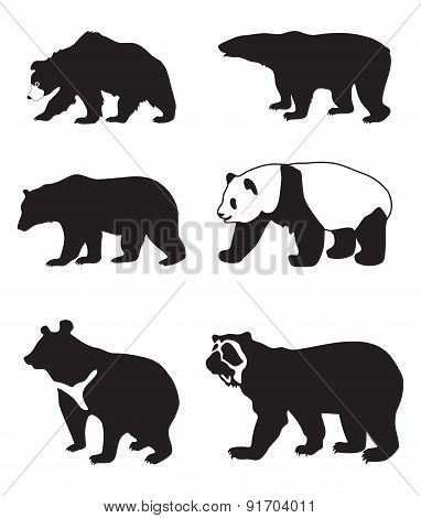 Illustration With Bears