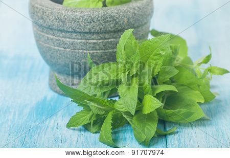 Fresh Green Mint In Mortar