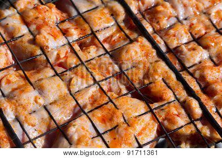 Crude Chicken On A Barbecue Lattice