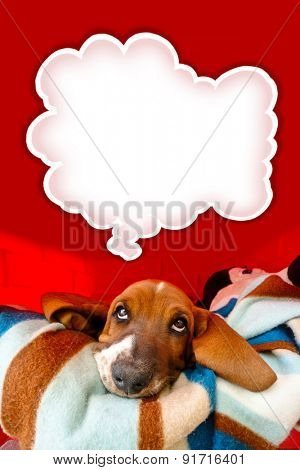 Thoughtful Basset Hound puppy inside his dog house with a think bubble above his head.
