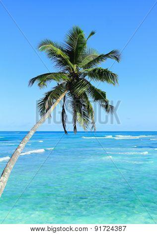 Coast Resort Seaside
