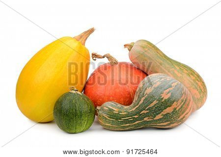 collection pumpkin isolated on white