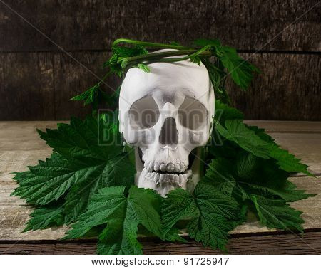 Skull with leaves.