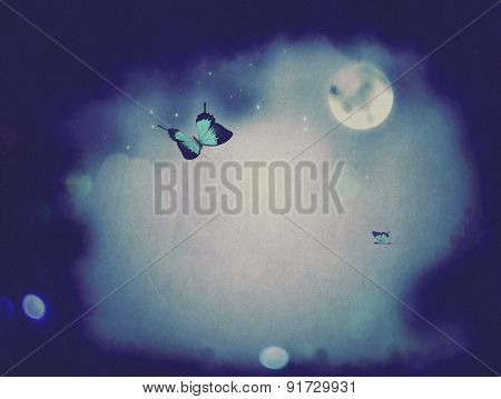 Night Butterflies