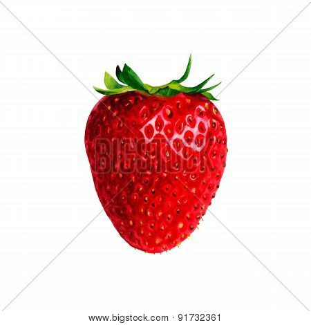 Realistic watercolor illustration strawberry isolated on white background vector