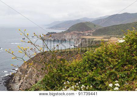 California Coast And The Bridge
