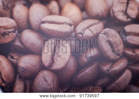beautiful coffee seeds close-up. background
