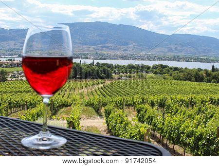 Wine Glas In Front Of Vineyard