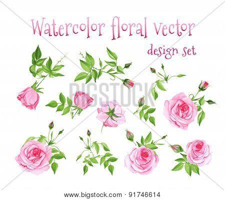 Watercolor Pink Roses Vintage Vector Design Set