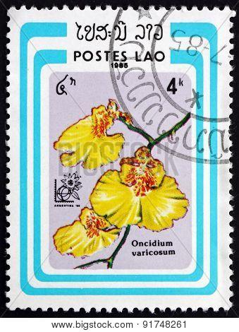 Postage Stamp Laos 1985 Oncidium Varicosum, Orchid