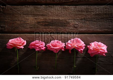 Row of beautiful pink roses on wooden table