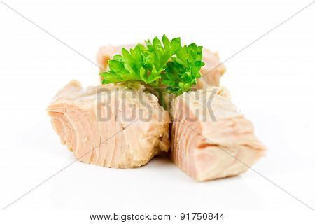 tuna isolated