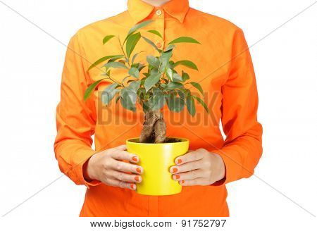 Woman in orange shirt holding a plant