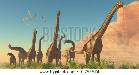 Brachiosaurus Afternoon