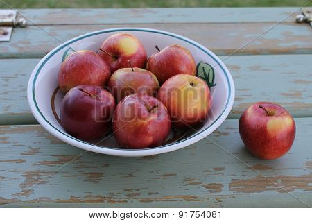 Bowl of sparatan apples