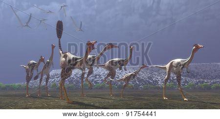 Mononykus Dinosaurs