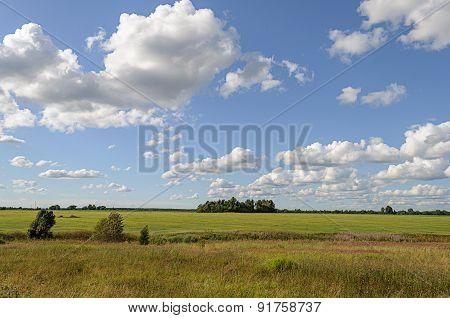 Green Meadow With Some Trees And Clouds In Blue Sky