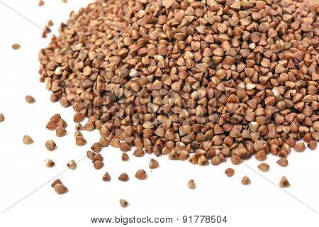This Is Closeup Of Buckwheat Isolated On White.