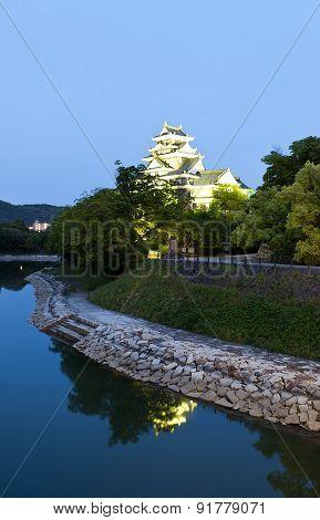 Okayama Castle At Night, Japan