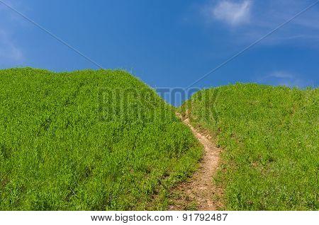 Path to blue heaven