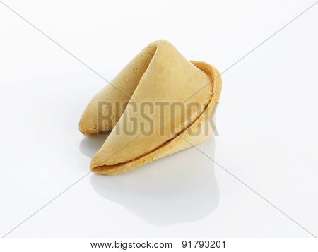 Single Fortune Cookie