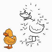 stock photo of duck  - Game for children - JPG