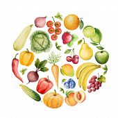 stock photo of water cabbage  - Set of watercolor vegetables and fruits - JPG
