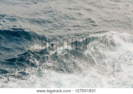 ocean waves and ???? during storm in the atlantic