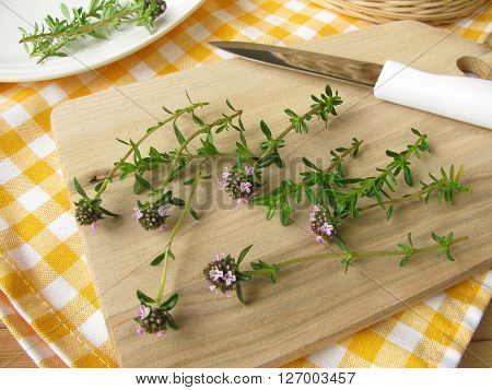 Fresh winter savory with flowers on cutting board