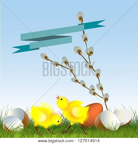 Cute chicks with spring flower against the blue sky
