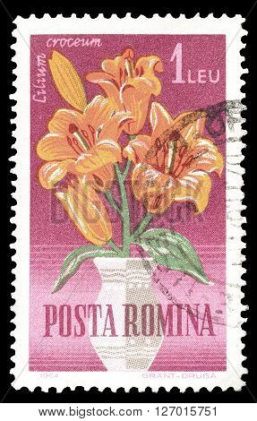 ROMANIA - CIRCA 1964 : Cancelled postage stamp printed by Romania, that shows Orange lilly.