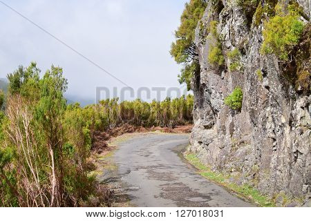 A country road in Madeira island Portugal