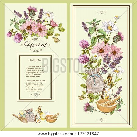 Vector vintage hand-drawn banner with wild flowers and herbs. Design for cosmetics, store, beauty salon, natural and organic products. Can be used like a greeting card. With place for text